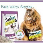 Arena para gatos en Mercadona - La Mejor selección On line
