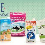 leche en polvo en Mercadona - Comprar en Linea