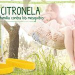 Pulseras citronela de Mercadona - Donde comprar On line